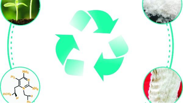 天丝面料是环保可降解的吗?