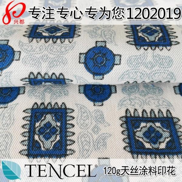 1202019纯天丝面料斜纹天丝涂料印花布料